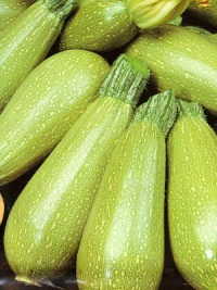 COURGETTE bolognese-1.jpg
