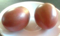 Tomate purple russian-1.jpg